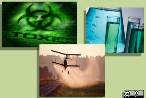 1902324 Toxicology in Environmental Health