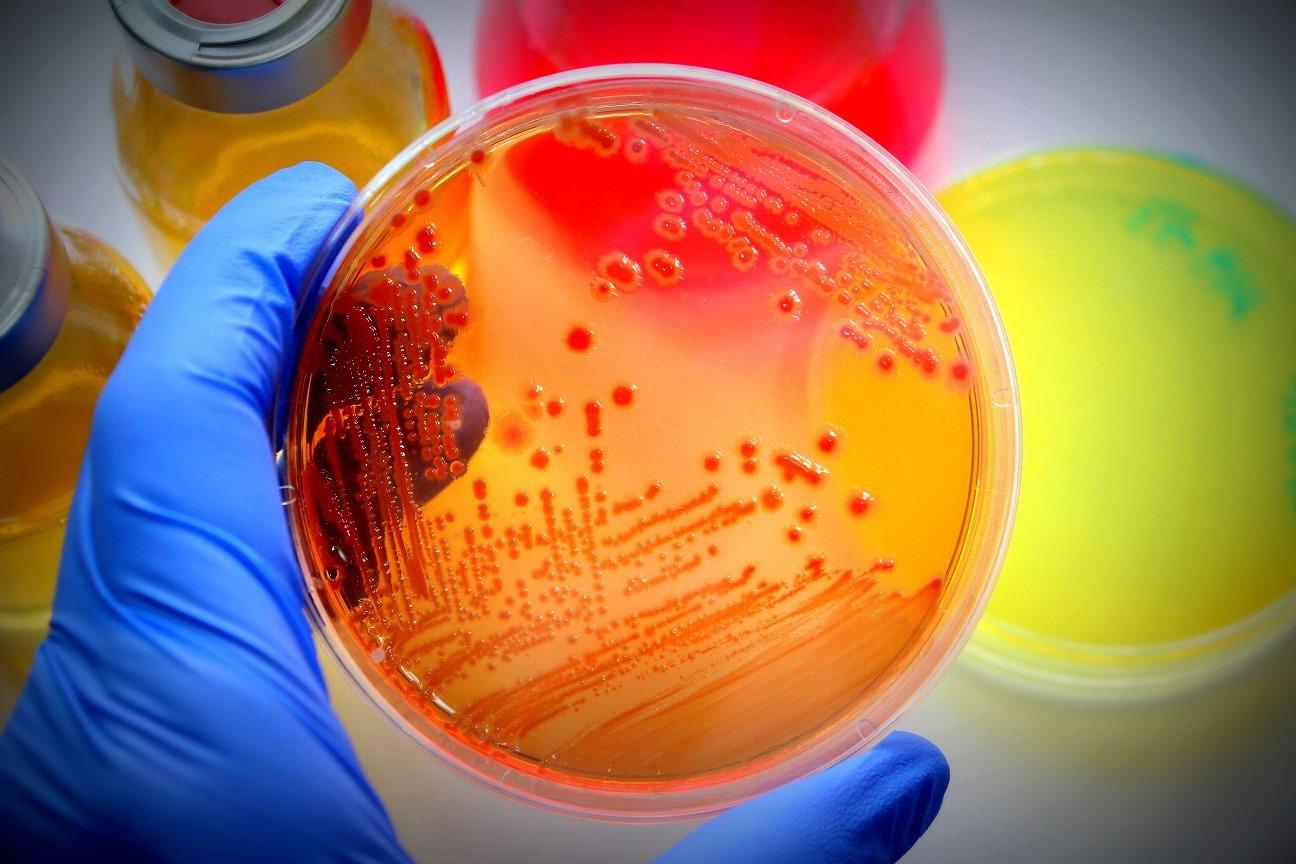 1112211 Fundamentals of Microbiology Laboratory
