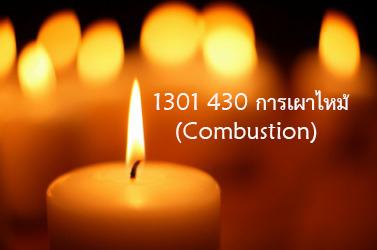 1301430 การเผาไหม้